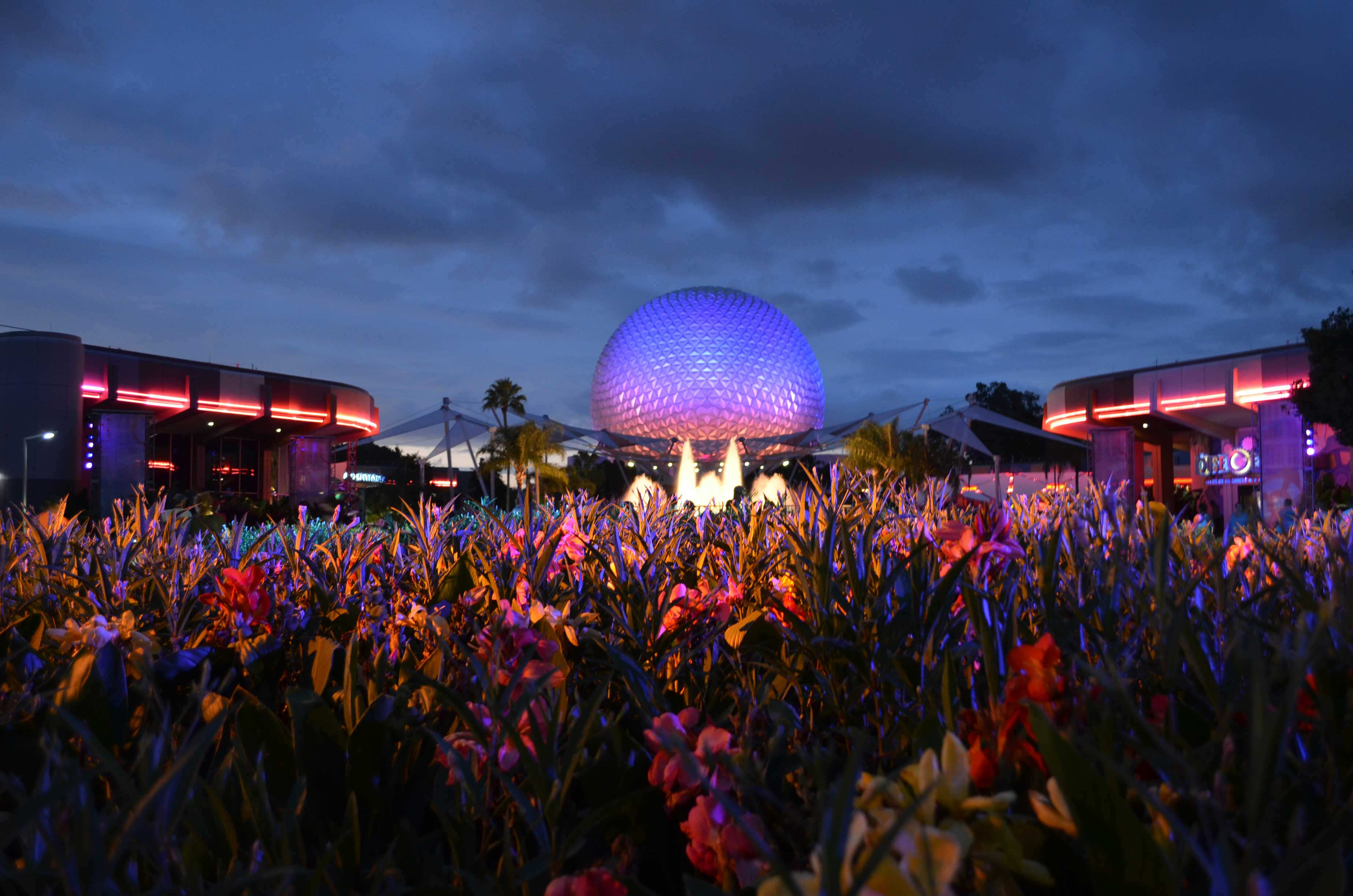 flowers in front of spaceship earth